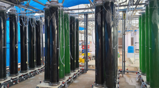 Algae-C Partners with Arizona Algae to Scale Production Getting Closer to Market